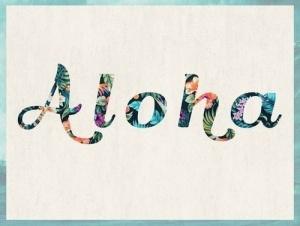 Aloha, presentación, fashion, moda,